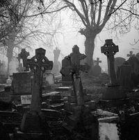 Приворот на кладбище